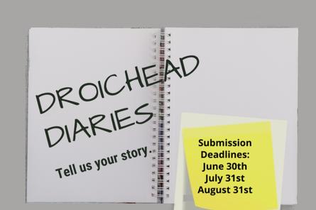Droichead Arts Centre -            #DroicheadConnects: Droichead Diaries