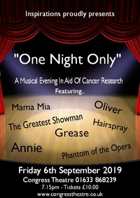 One Night Only Poster