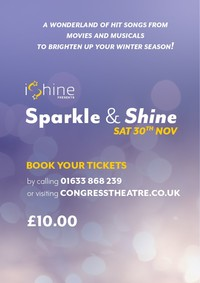 Sparkle & Shine Poster
