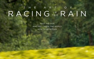 Thumbnail for The Art of Racing in the Rain