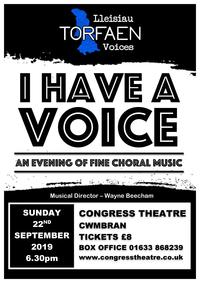 I Have A voice Poster
