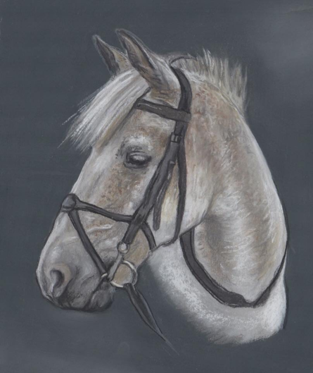 Pastel Painting with Grace Scott