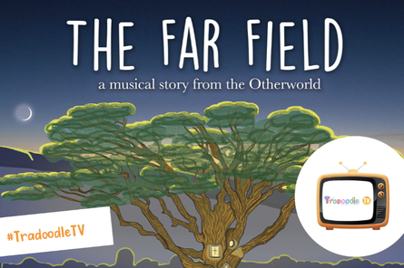 Droichead Arts Centre -            #DroicheadConnects - Ceol Connected presents The Far Field sessions @ Tradoodle TV!